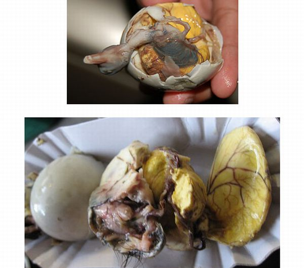 disgusting foods you will never want to try
