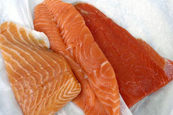 Salmon, tuna and sardines