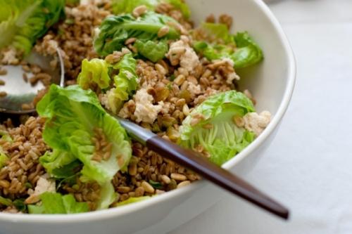 Wheat-Berry Salad