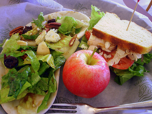 healthy food delivery for seniors